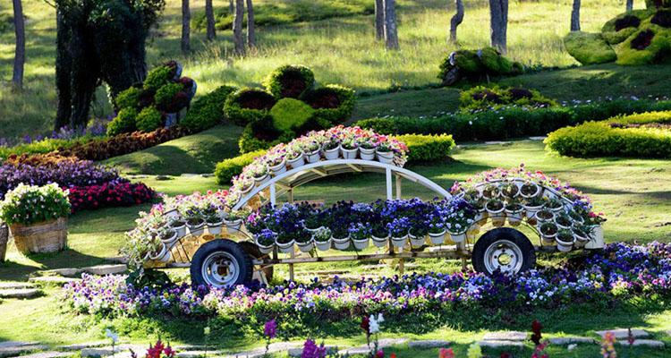 Vườn hoa Đà Lạt 6