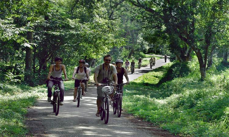 Vườn quốc gia Cúc Phương - đạp xe