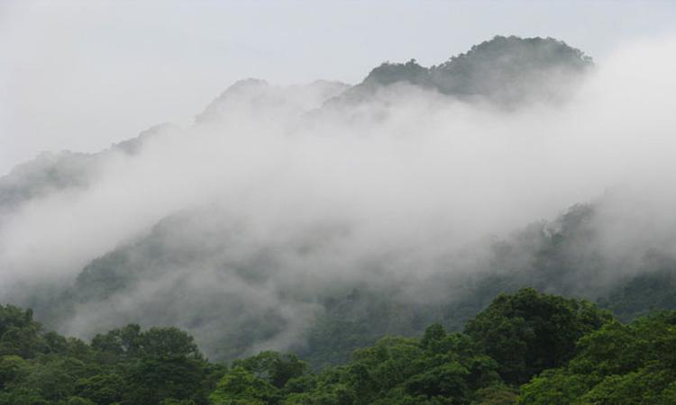 Vườn quốc gia Cúc Phương Ninh Bình - đỉnh mây bạc