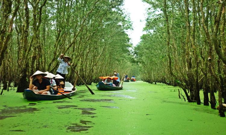 Vườn quốc gia Tràm Chim - tháng 10