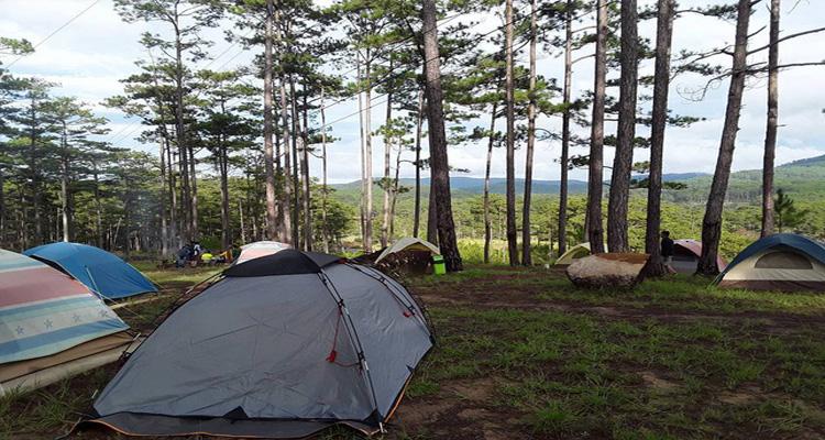 zoodoo đà lạt - cắm trại
