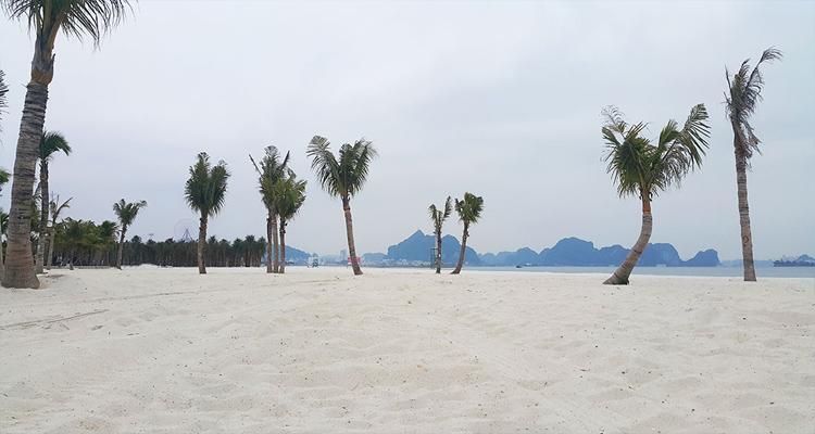 Quảng Ninh có gì chơi - biển bãi cháy