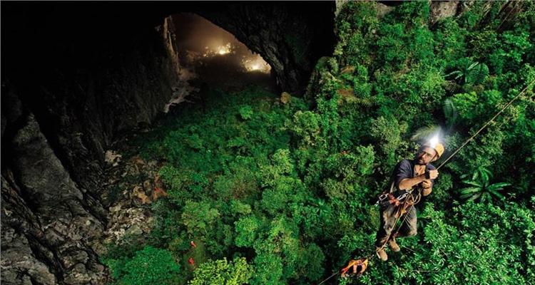 Cảnh đẹp Việt Nam - Hệ sinh thái