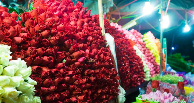 Chợ hoa Hồ Thị Kỷ 05