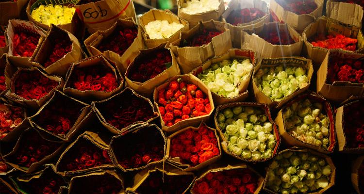 Chợ hoa Hồ Thị Kỷ 06