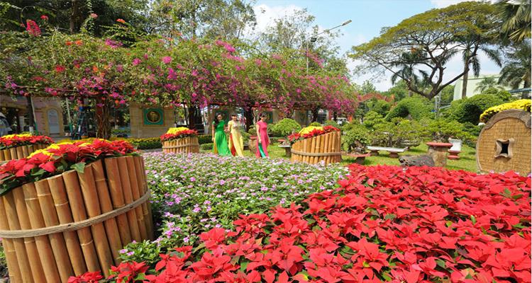 Công viên văn hóa Đầm Sen - hoa
