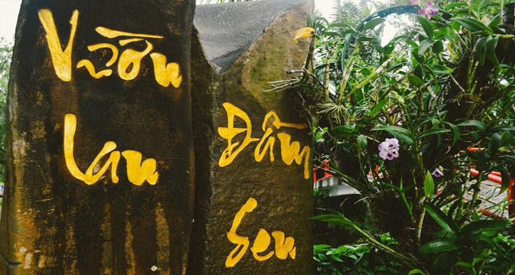 Công viên văn hóa Đầm Sen - lan