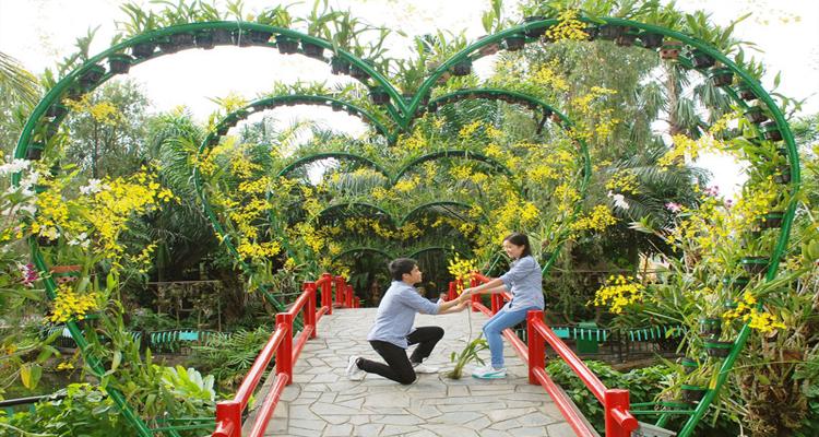 Công viên văn hóa Đầm Sen - hoa quý