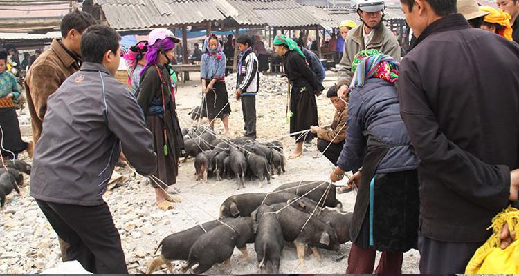 Đặc sản Lào Cai - chợ phiên