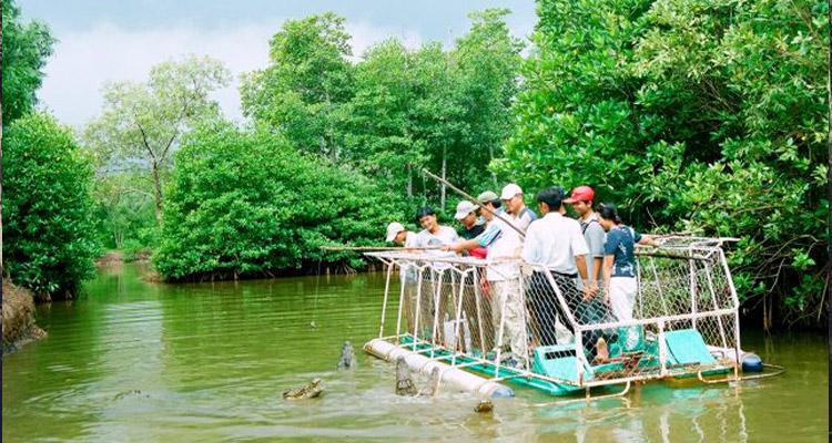 Du lịch Cần Giờ - câu cá sấu
