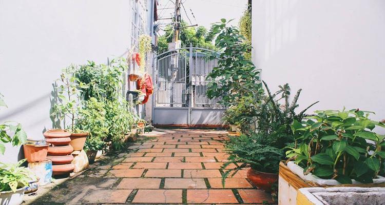 Homestay Vũng Tàu - vườn