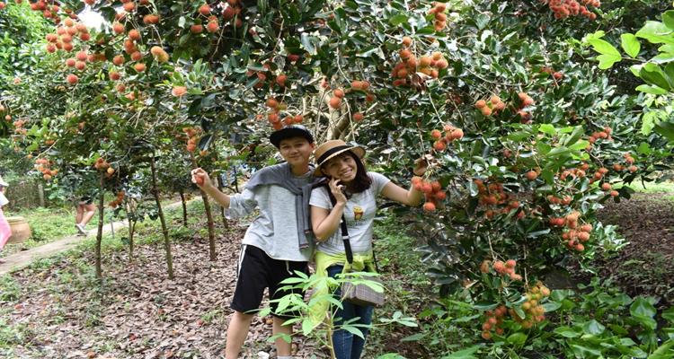 Khu du lịch Vinh Sang - vườn