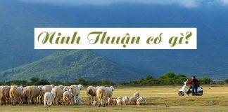 Ninh Thuận có gì 09
