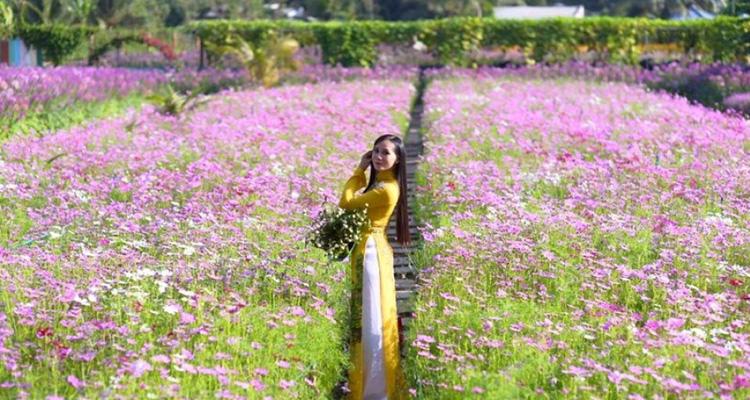 Vườn hoa Mãn Đình Hồng 02
