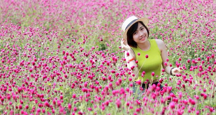 Vườn hoa Mãn Đình Hồng 03